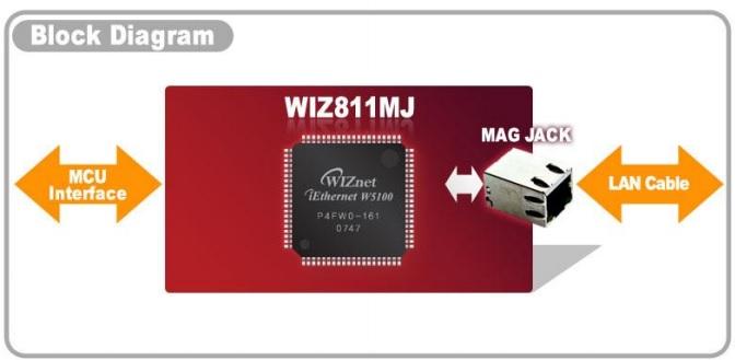 wiz811MJ